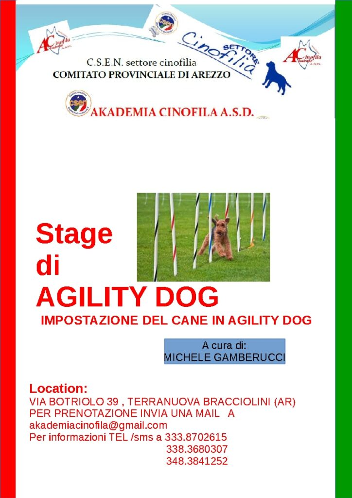 stage agility